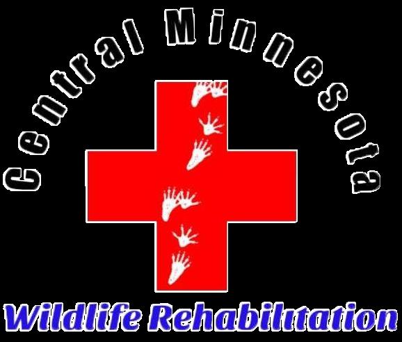 Central MN Wildlife Rehab